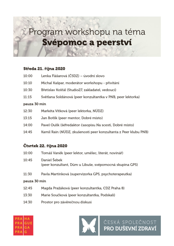 Program PeerTO peer